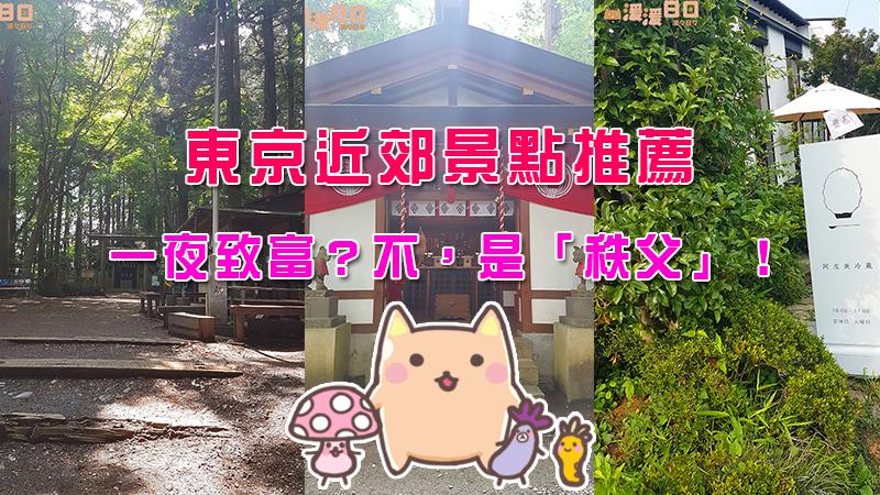 【日本/遊記】去膩購物行程了嗎?東京近郊景點推薦,一夜致富?不,是「秩父」!