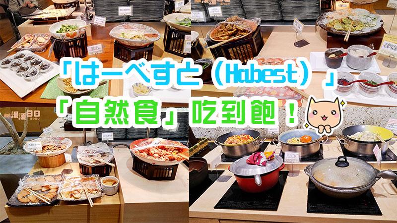 【日本/食記】東京池袋「はーべすと(Habest)」|蔬菜超豐盛、對身體很好的「自然食」吃到飽!